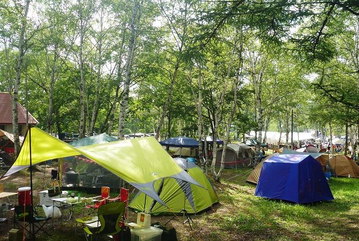 2021年貸切バスで行きたいキャンプ場-水上宝台樹キャンプ場