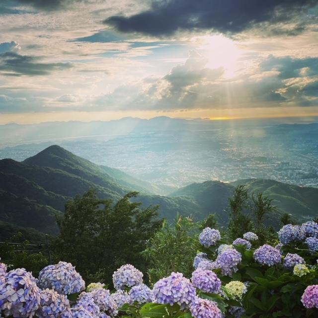 皿倉山の景色