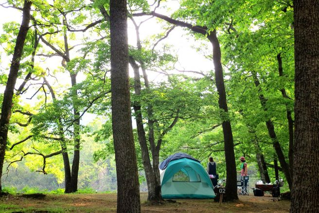 2021年貸切バスで行きたいキャンプ場-フォレストサンズ長瀞